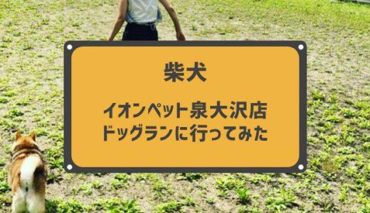 無料で利用できるドッグラン『イオンペット泉大沢店 ドッグラン』に行ってきました。