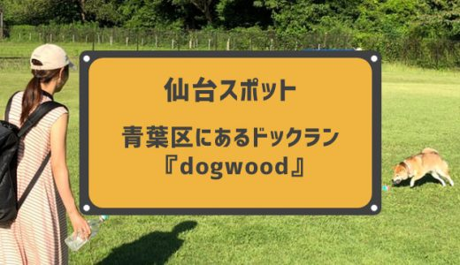 仙台市青葉区にあるドッグラン『dogwood』に行ってきました。