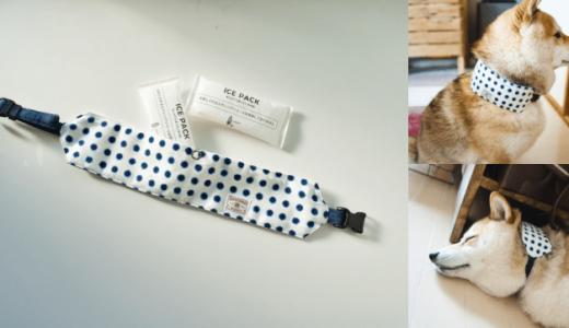 夏バテ防止に効果大でデザインも豊富!犬用クールネックの決定版を見つけました。